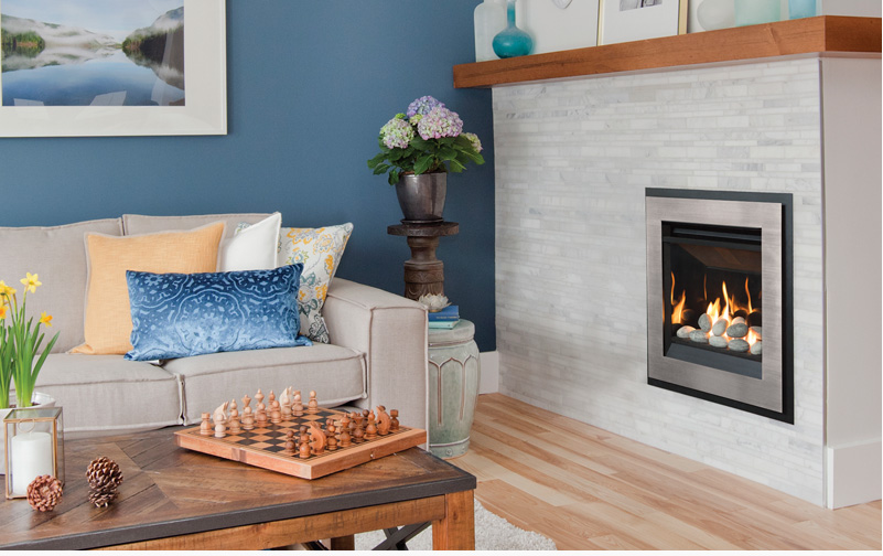 senator gas coal fireplace insert