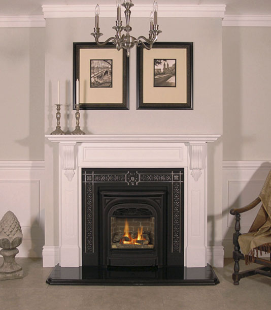 President Gas Fireplace