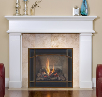 ReFresh Gas Fireplace Screen for Direct Vent Fireplaces